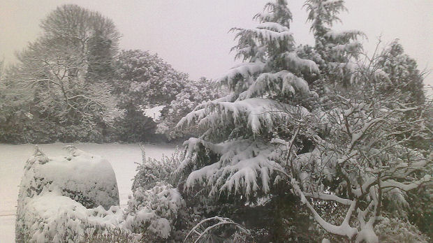 From New Milton Hampshire, at 8.00 in the morning about 5 inches of snow.  													  													Hinchcliffe Family