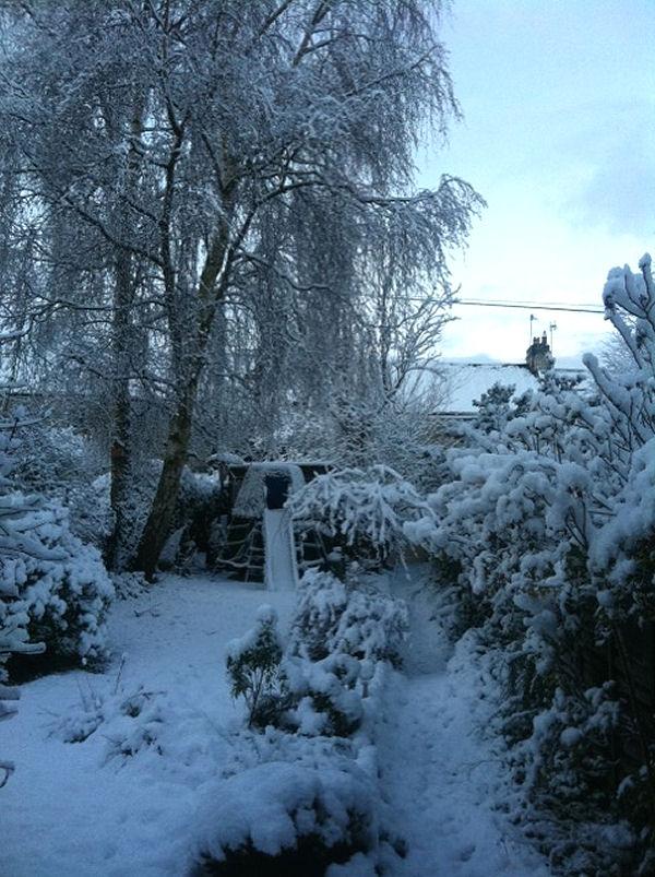 Winter wonderland,Clara Vale Tyne and Wear