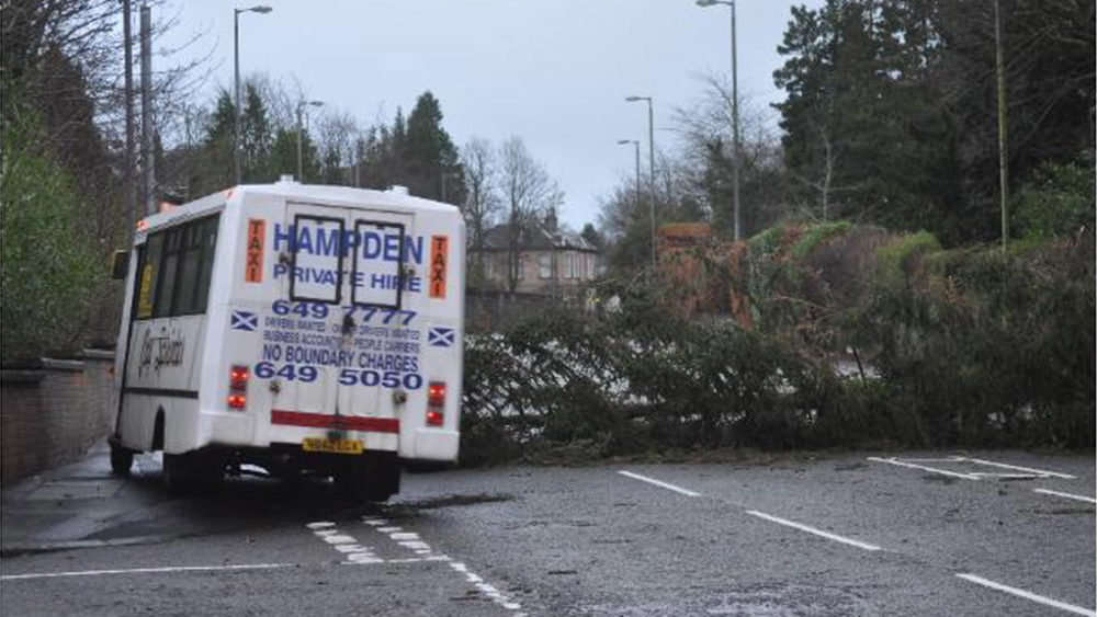 Roads become perilous in Scotland as strong gusts fell giant trees.