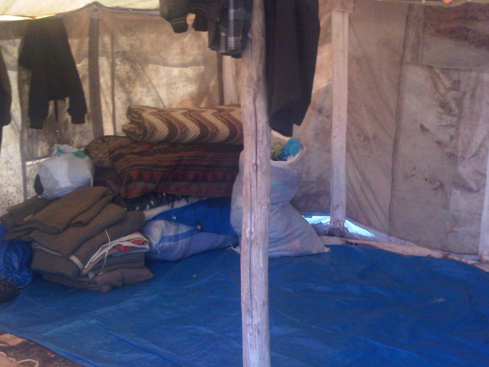 Home for the Awid family from Idlib - mum, dad, five sons and five daughters.