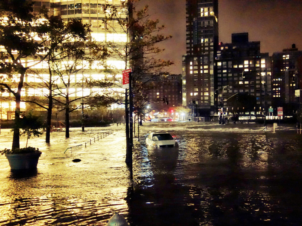 West side highway, under water. All rights reserved Dai Baker.