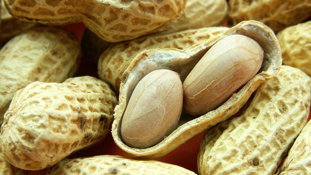 11_peanuts_g_w